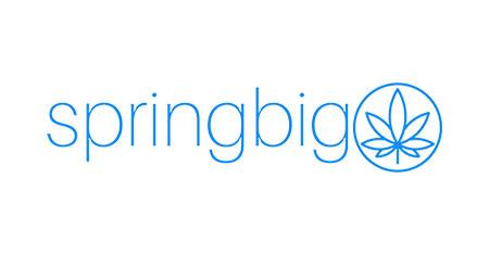 springbig logo